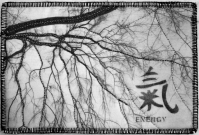 Sara Kelly, Elm Calligraphy,