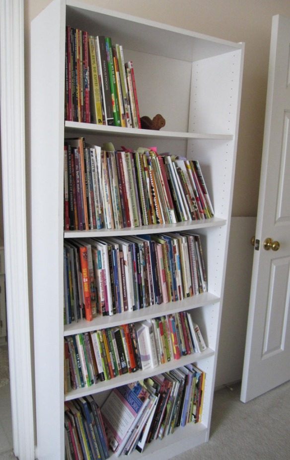 Dian Staley One Bookcase