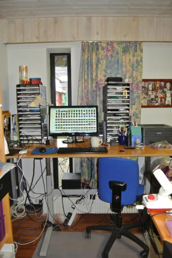 Gurli studio 6