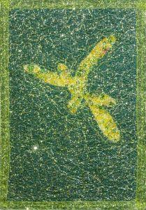 Lauren C, Dragonfly