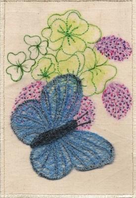 christine-bostock-r22-butterflies-common-blue