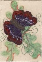 christine-bostock-r22-butterflies-purple-emperor