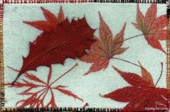 Background fabric printed from single leaf photos and Hakea leaf added for texture Maureen Curlewis, R23, Autumn (5)